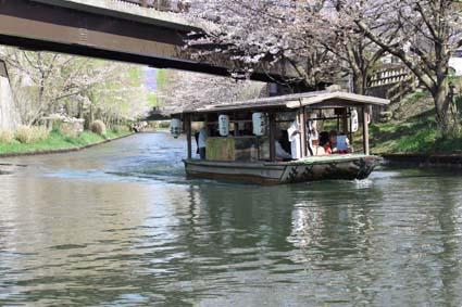 十石舟と桜-4(20170404).jpg