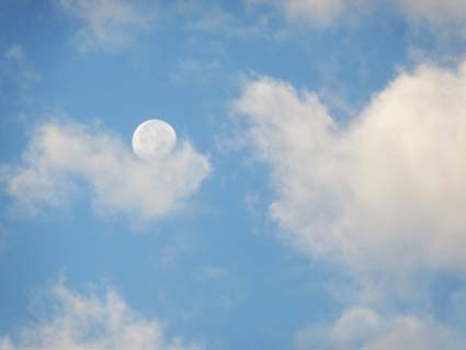 昼間の月(20161019).jpg