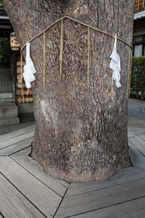 晴明神社-11(20151017).jpg