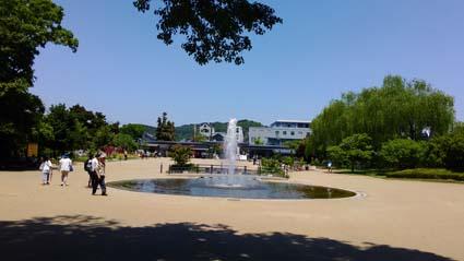 植物園-1(20170522).jpg