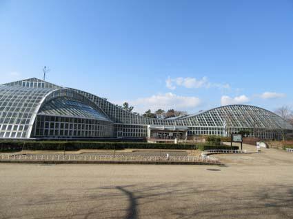 植物園-1(20180109).jpg