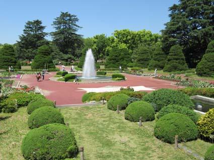 植物園-2(20170519).jpg