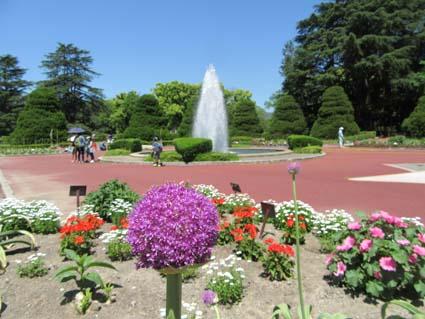 植物園-3(20170519).jpg
