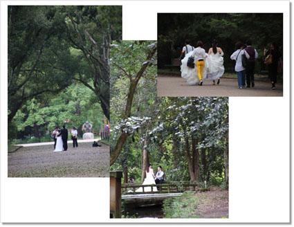 結婚記念写真.jpg