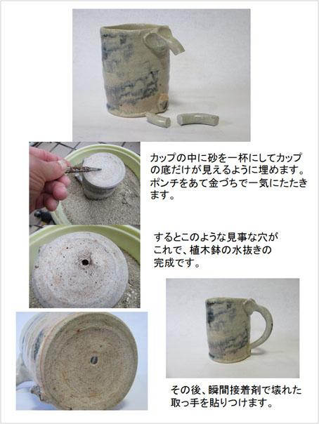 カップから植木鉢へ(20180605).jpg