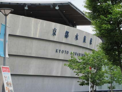 京都水族館-2(20190529).jpg