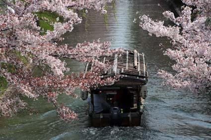 十石舟と桜まつり-3(20180401).jpg