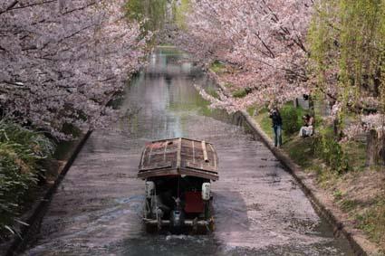 十石舟と桜まつり-5(20180401).jpg