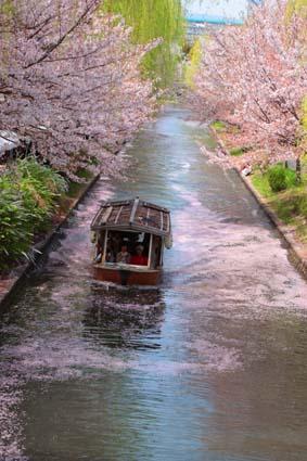 十石舟と桜まつり-7(20180401).jpg