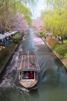 十石舟と桜まつり-8(20180401).jpg