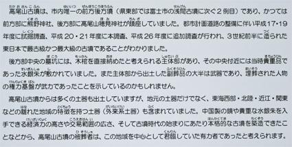 塩漬け-5(20180813).jpg