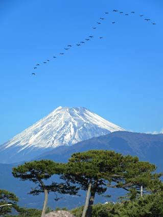 富士山-3(20180101).jpg