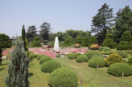 植物園-1(20180719).jpg