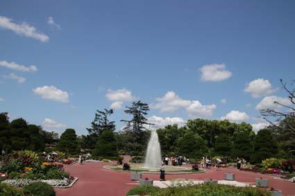 植物園-1(20190613).jpg