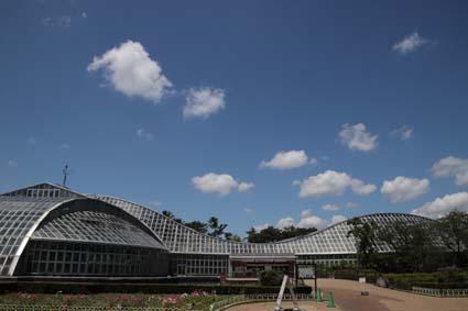 植物園-2(20190613).jpg
