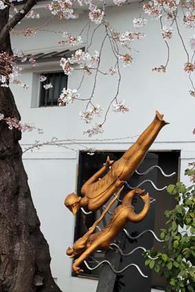 河童と桜-2(20190405).jpg