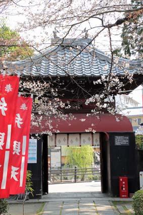 長建寺の桜-1(20180327).jpg